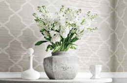 White flowers in front of grey wallpaper